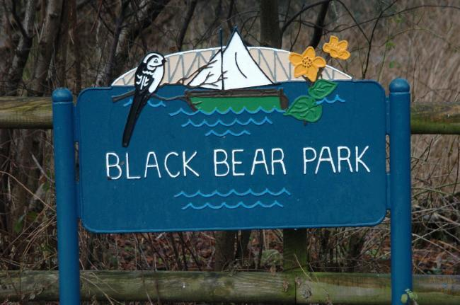 Black Bear Park in Latchford