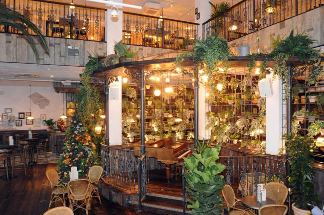 The Botanist in Time Square