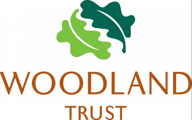 Woodland scheme comes to an end