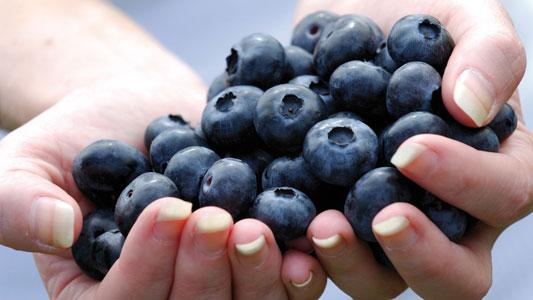 Blueberries have an incredibly low fructose count.