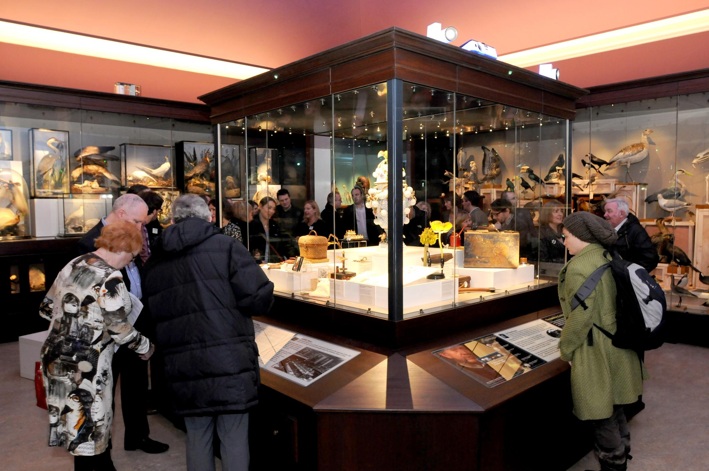 Warrington Museum's 'Cabinet of Curiosities' opens to public after £672k refurb