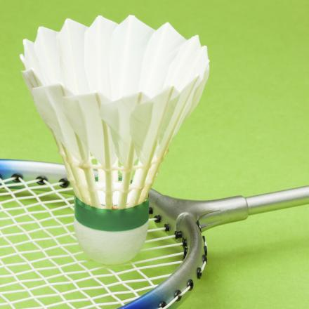 School children invited to badminton tournament
