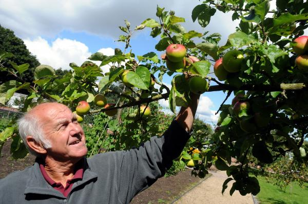 Grappenhall Walled Garden back to its former glory