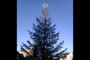 No Christmas tree on Manchester Road for third year running