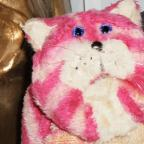 Warrington Guardian: Was that Bagpuss we just spotted on the X Factor?