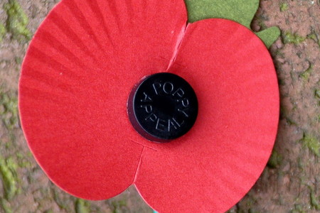 Where does the Poppy Appeal money go?