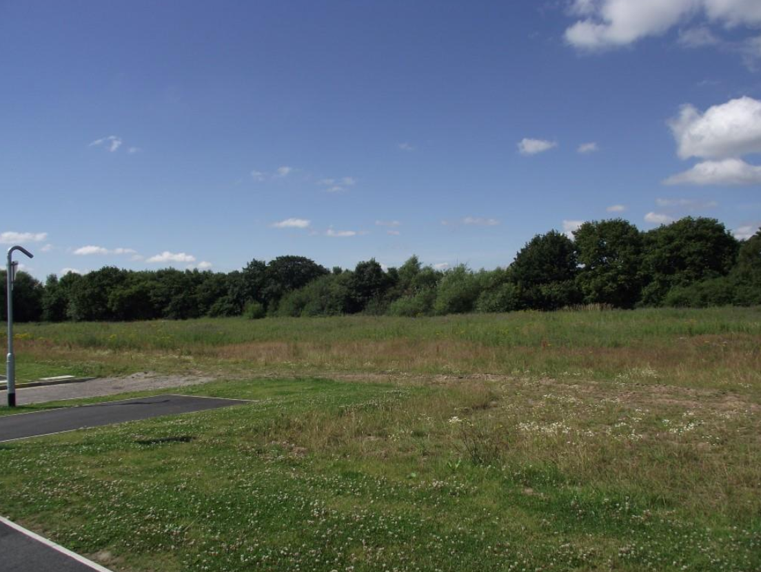 Plans for 158 homes at Omega on land bounded by Lingley Green Avenue and Sophia Drive have been approved by Warrington Borough Council.