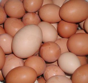 Warrington Guardian: Shopkeepers ban youngsters from buying eggs