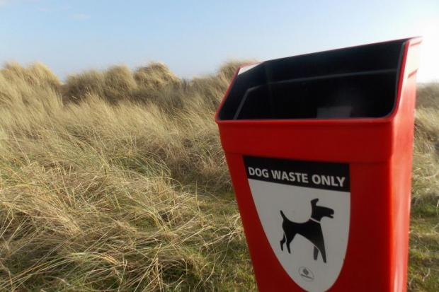 LETTER: 'There's dog poo everywhere - why do people only care about themselves?'