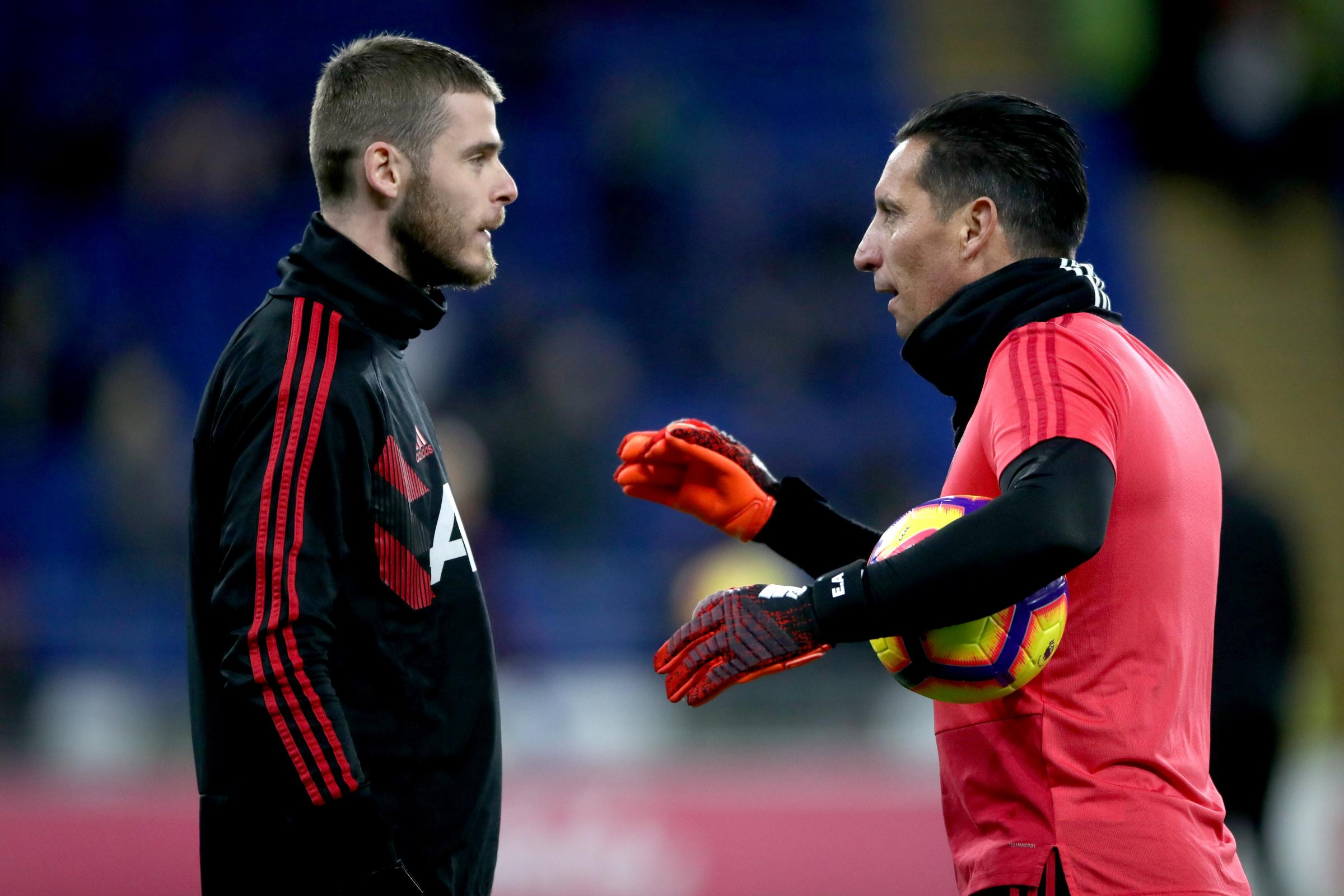 Emilio Alvarez believes David De Gea has more level to go