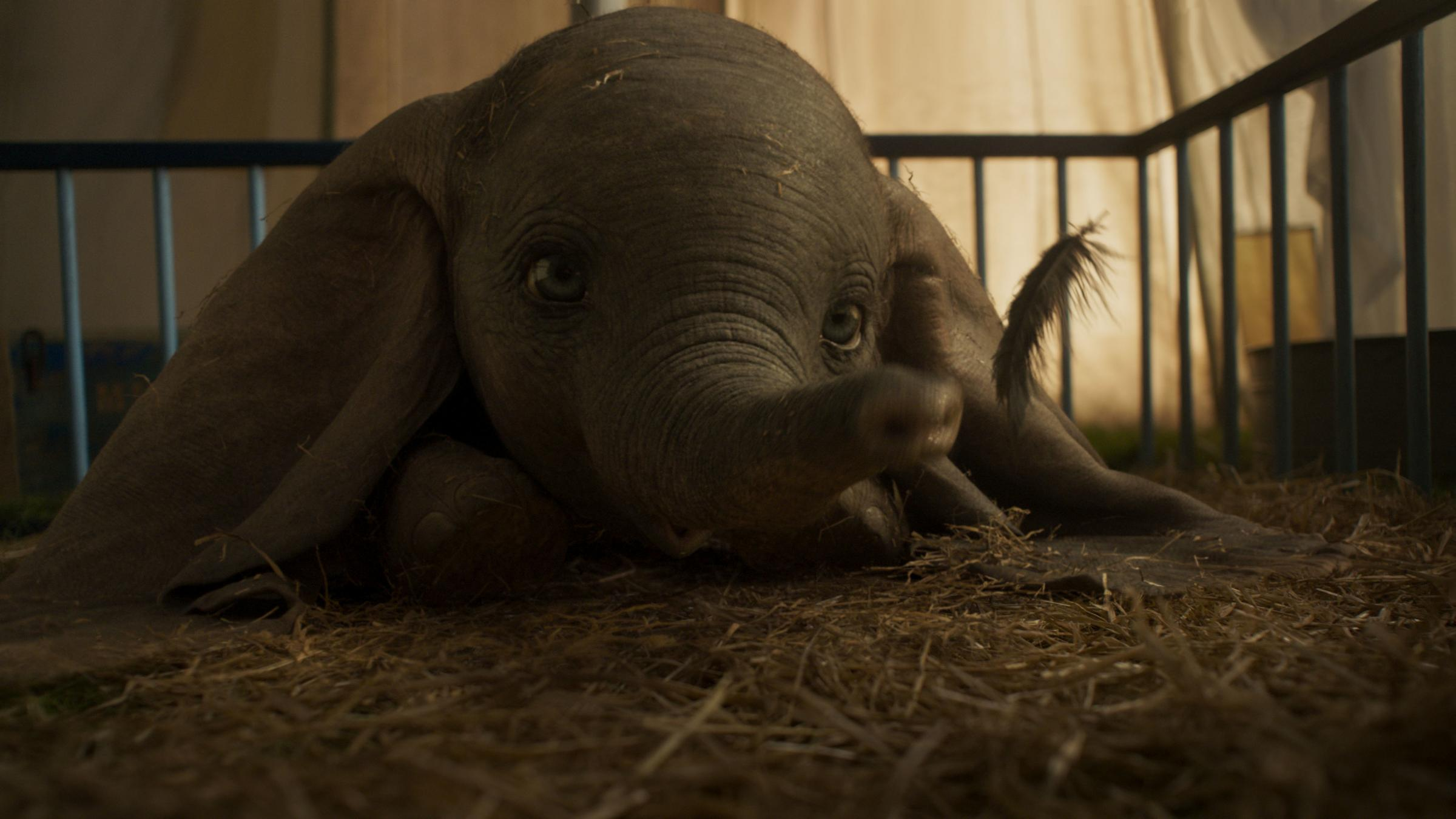 Cinema review: Dumbo